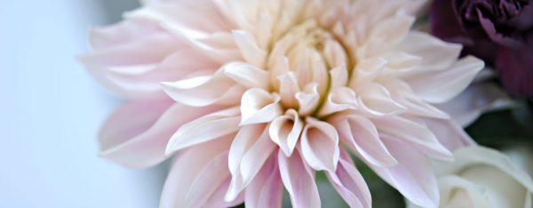Shop Online at Bloom Florist in Sonora